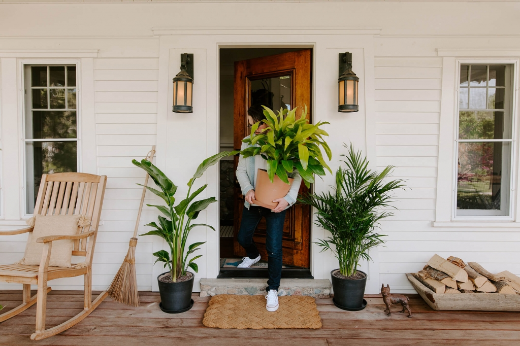 Five Items Your Professional Removalist May Avoid Touching